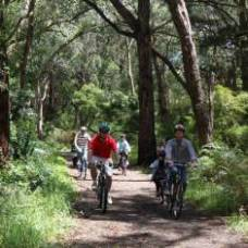 Merricks-Red Hill Rail Trail